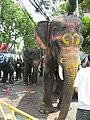 Bangkok photo 2010 (34) (28328060025).jpg