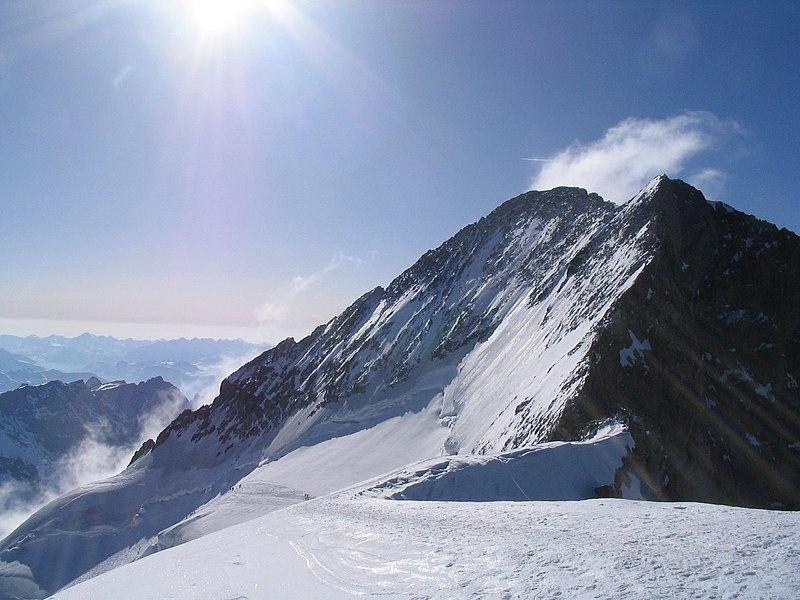 File:Barre Ecrins depuis Dome de neige.jpg