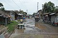 Basanti Highway - SH 3 - Sonakhali - South 24 Parganas 2016-07-10 4684.JPG