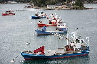 Oyster farming - Oyster farming boats in Morbihan, France