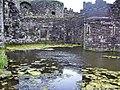 Beaumaris castle - panoramio - Tanya Dedyukhina (2).jpg
