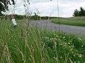 Bend in Black Lane - geograph.org.uk - 878195.jpg