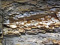 Bentonite (105.6 Ma) in the Dakota Sandstone (Lower Cretaceous) (Dinosaur Ridge, Colorado, USA) 9 (22196799162).jpg