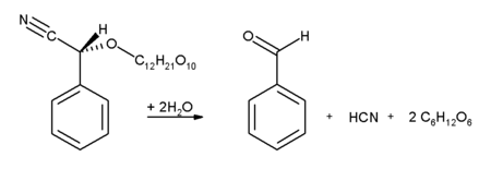 Benzaldehyde-chemical-amygdalin.png