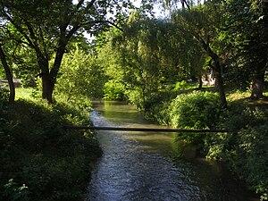 Zolota Lypa River - The Zolota Lypa River.