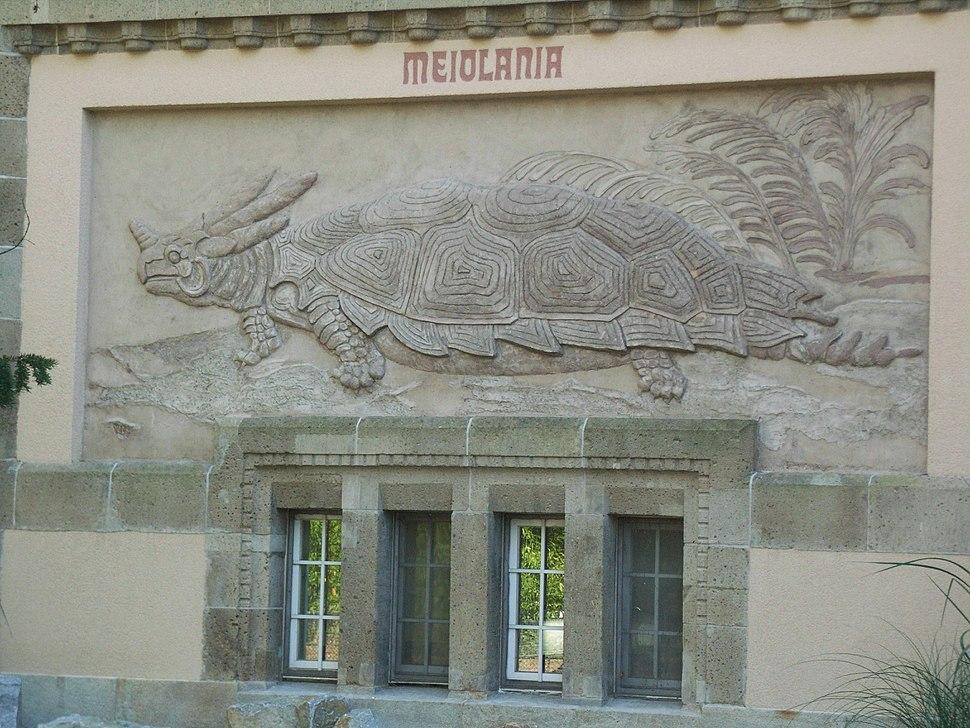 BerlinAquarium (3)