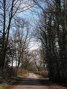 Beryl Burton Cycleway - geograph.org.uk - 144634
