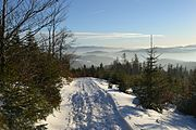 Beskid Sądecki in winter 2016 05.jpg