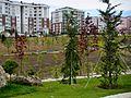 Beylikduzu Yesil Vadi Yaşam Vadisi Botanik Sehir Parki Nisan 2014 - 01.jpg