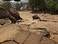 Bhubaneswar Udaygiri Caves (1).jpg