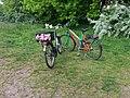 Bikes in love.jpg