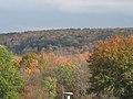 Binghamton University Nature Preserve - panoramio.jpg