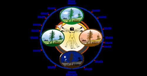 Biological clock human Circadian rhythm