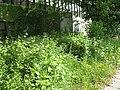 Biotop - panoramio (1).jpg