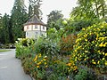 Blütenmeer - panoramio.jpg