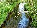 Black Brook Shepshed - geograph.org.uk - 1340118.jpg