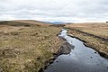 Black Water near Mackilston Hill - panoramio.jpg