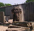 Blackpool Zoo - geograph.org.uk - 281223.jpg