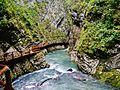 Bled Vintgar-Klamm 31.JPG