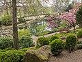 Blick auf den oberen Teich Japanischer Garten Kaiserslautern.jpg