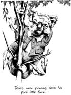 Blinky Bill's father illustration