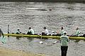 Boat Race 2014 - Main Race (42).jpg