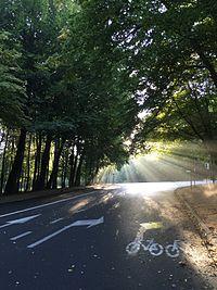 Bois de La Cambre by GdML.jpg