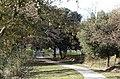 Bolsena war cemetery 5770.jpg