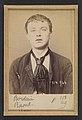 Borderie. Raoul. 18 ans, né à Castelsarazin (Tarn & Garonne). Peintre en bâtiment. Anarchiste. 1-3-94. MET DP290197.jpg