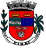 Brasao-pirai.PNG