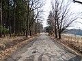 Brdy, Křešín, Sýkorky, asfaltová cesta.jpg