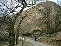 Bridge over the Allt Gleann nam Meann - geograph.org.uk - 132568.jpg