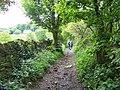 Bridleway Near HazelBrae - geograph.org.uk - 1311662.jpg