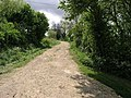 Bridleway from Ompton - geograph.org.uk - 434462.jpg