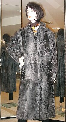 Broadtail coat, natural, front.jpg