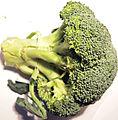 Broccoli3.jpg