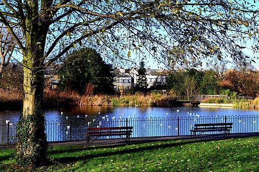 Brockwell Park No 1 pond (23030760963)
