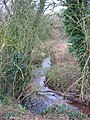 Brook near Bradley Brook - geograph.org.uk - 323347.jpg