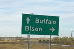 Buffalo Bison sign near Buffalo SD.jpg