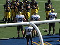 Buffaloes on offense at Colorado at Cal 2010-09-11 57.JPG