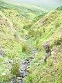 Burn on Lowmill Knowe - geograph.org.uk - 1473331.jpg