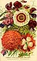 Burpee's farm annual, 1887 - garden, farm, and flower seeds (1887) (20484059076).jpg
