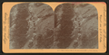 Burro train, with ore from the gold mines, Col. U.S.A, by Singley, B. L. (Benjamin Lloyd).png