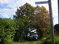 Côte des érables, affiche de la rue.JPG