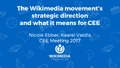 CEE meeting 2017 – Movement Strategy.pdf