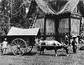 COLLECTIE TROPENMUSEUM Een Minangkabause rijstschuur en een ossenkar te Batipoe Padangse Bovenlanden Sumatra`s Westkust TMnr 60003547.jpg