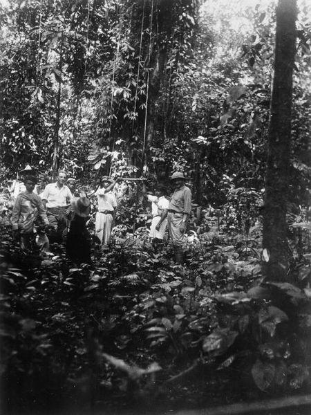 File:COLLECTIE TROPENMUSEUM Een bezoek aan onontgonnen terrein nabij de koffie-onderneming Kaba Wetan op Zuid Sumatra TMnr 60011042.jpg