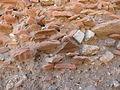 Caesaria Hippodrome wall layers 0605 (494573361).jpg