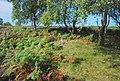 Cairn on Birchen Edge - geograph.org.uk - 551388.jpg