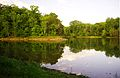 Calfkiller-river-mouth-tn1.jpg